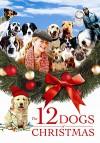12 рождественских собак (2005) — скачать фильм MP4 — The 12 Dogs of Christmas