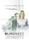 Слепота (2008) — скачать фильм MP4 — Blindness