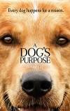 Собачья жизнь (2017) — скачать фильм MP4 — A Dog's Purpose