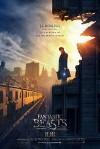 Фантастические твари и где они обитают (2016) — скачать фильм MP4 — Fantastic Beasts and Where to Find Them
