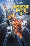 Дорога домой 2: Затерянные в Сан-Франциско (1996) — скачать фильм MP4 — Homeward Bound II: Lost in San Francisco