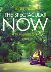 Захватывающее время (2013) — скачать фильм MP4 — The Spectacular Now