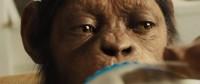 Восстание планеты обезьян (2011) — кадр коллекционного качества