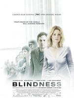 Слепота (2008) скачать на телефон бесплатно mp4