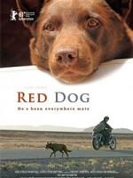 Рыжий пес (2011) скачать на телефон бесплатно mp4