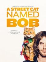 Уличный кот по кличке Боб (2016) скачать на телефон бесплатно mp4